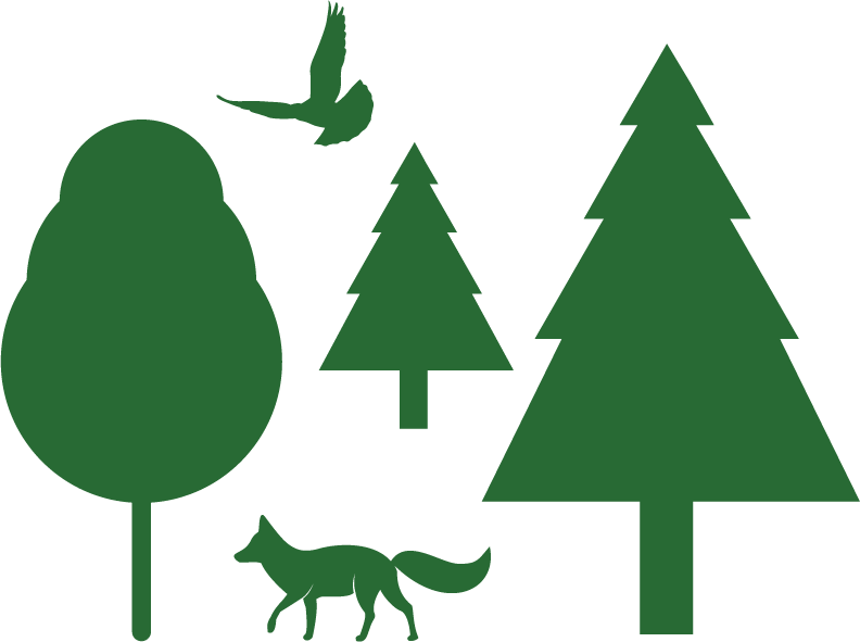 Healthy Forests & Wildlife Graphic